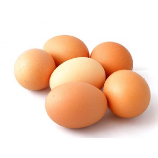 Яйца L Зора 1 бр.